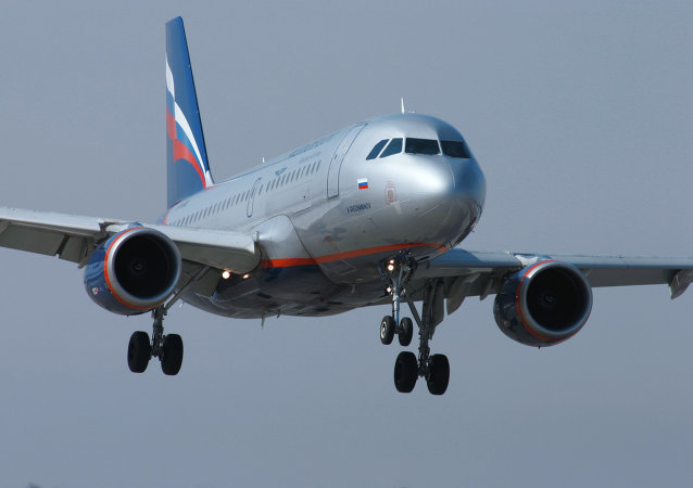 Aeroflot's CEO Vitaly Savelyev said the company plans to increase passenger traffic on flights to Crimea.