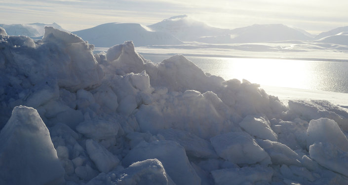Polar expedition to Spitsbergen conducted as part of Arctica 2015 project