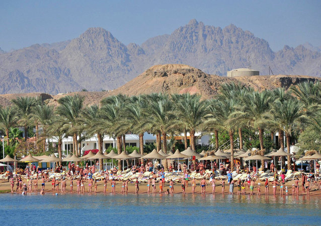 Russian tourists will be able to travel to Egypt in the foreseeable future, Russian Ambassador to Egypt Sergei Kirpichenko said Thursday.