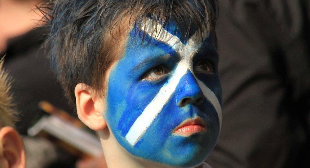 Young Scottish football fan