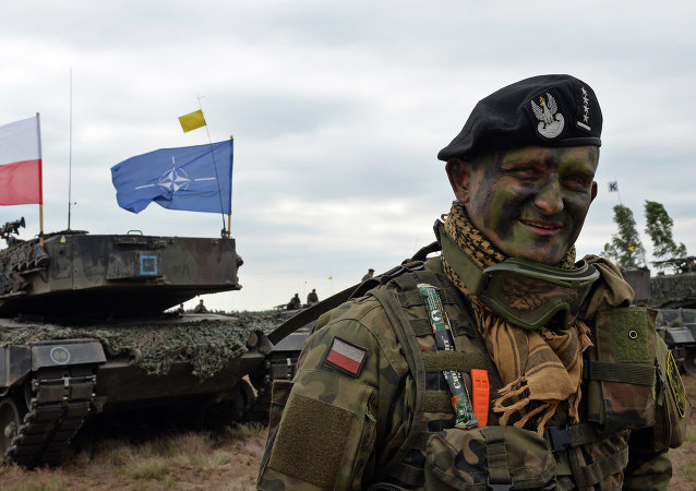 Polish tank comander smiles after a NATO Response Force (NRF) exercise in Zagan, southwest Poland on June 18, 2015