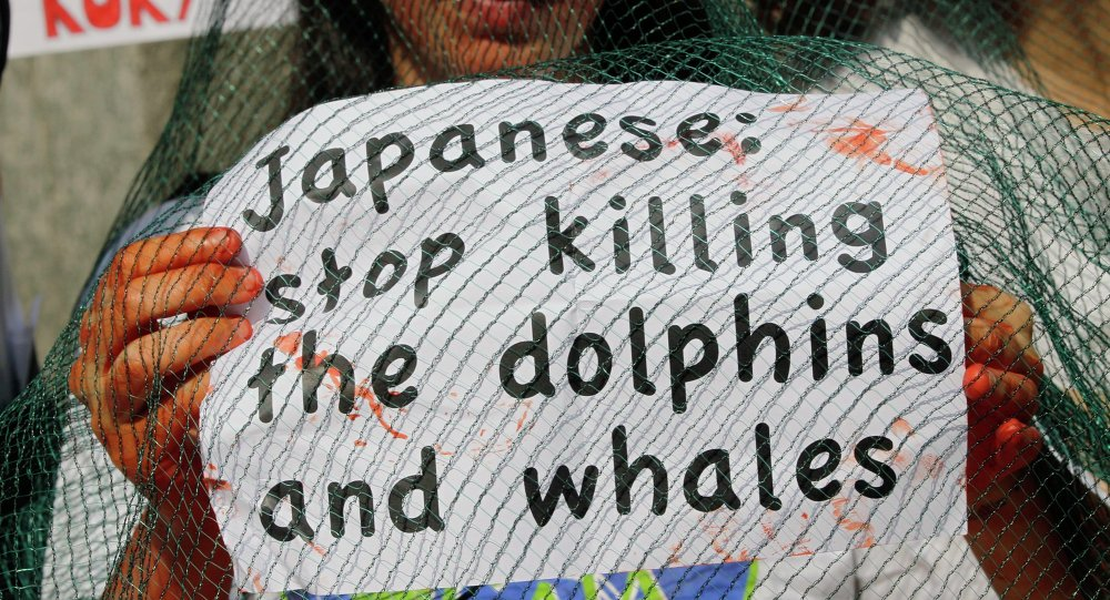 An activist of the environmental group 'Gaia' holds a poster during a protest outside the Japanese chamber of commerce in Milan, Italy.