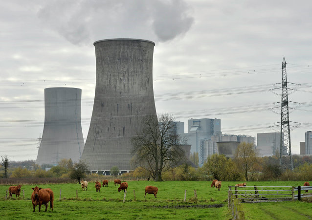 The share of electricity generated from coal rose in Germany last year as the country seeks to achieve its ambitious aim of switching off all nuclear power plants by 2022.