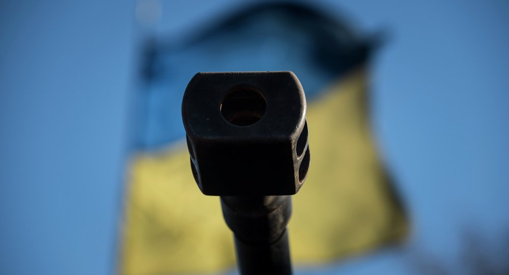 A Ukrainian flag is seen behind a canon near the village of Luhanske, eastern Ukraine, Feb. 24, 2015