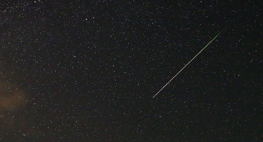 A meteor streaks across the sky during the Perseid meteor shower near Kraljevine on mountain Smetovi in the early morning August 12, 2015