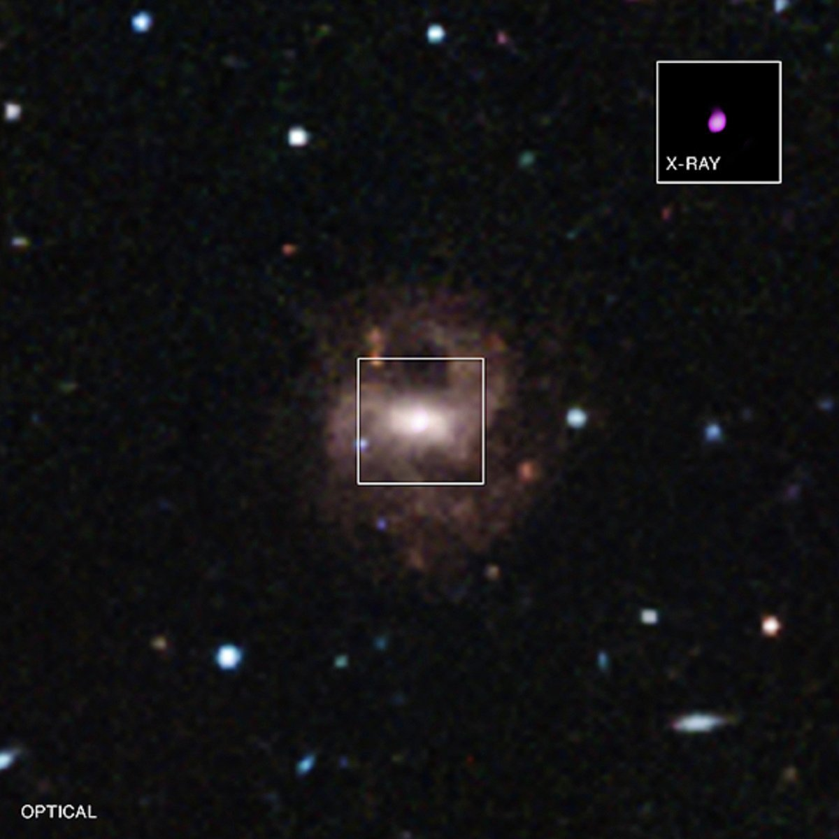The black hole in RGG 118 is nearly 100 times less massive than the supermassive black hole found in the center of the Milky Way. It's also about 200,000 times less massive than the heaviest black holes found in the centers of other galaxies.