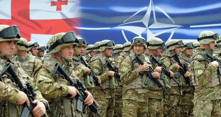 Georgian soldiers stand in formation during the inauguration ceremony of the NATO-Georgian Joint Training and Evaluation Center at the Krtsanisi military training base, outside Tbilisi, on August 27, 2015.