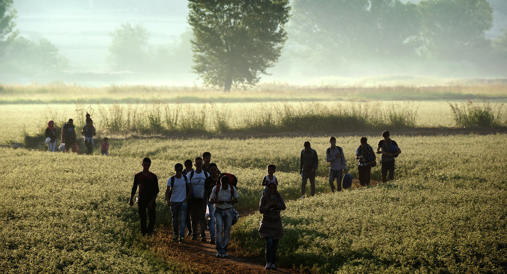 Migrants walk through a field to cross the border from Greece to Macedonia near the Greek village of Idomeni on August 29, 2015
