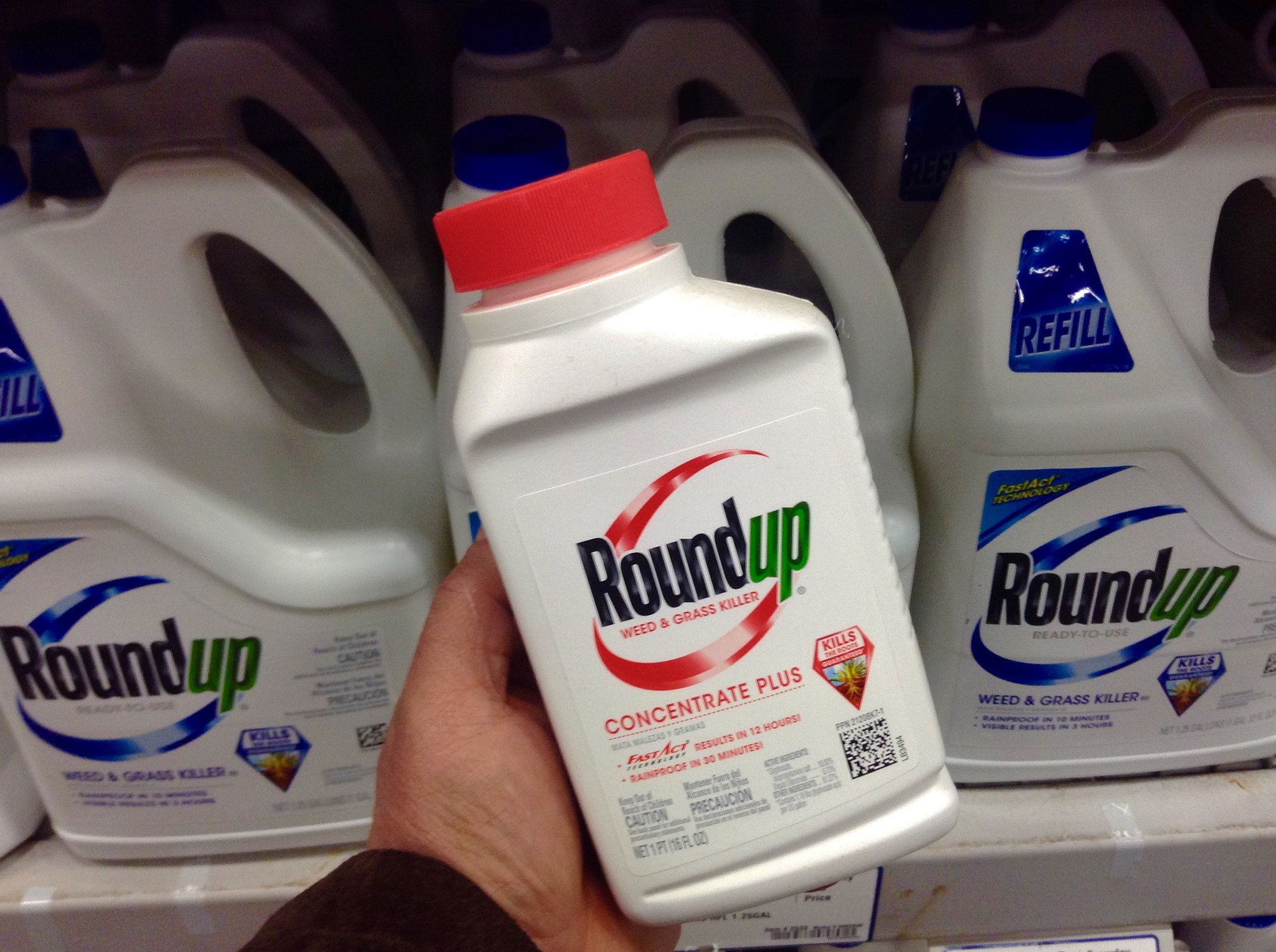 The French Ministry of Ecology declared a ban on the use of Monsanto's Roundup herbicide in the nation's nurseries and garden centers Sunday, citing the previous UN classification of the chemical glyphosate as possibly carcinogenic.