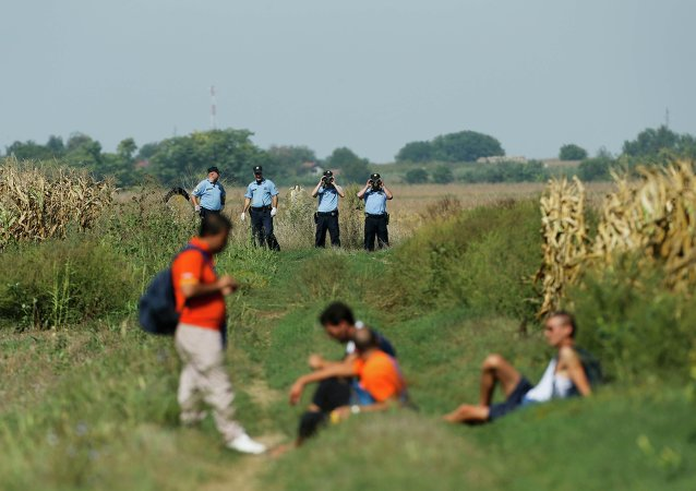 Croatian policemen observe a group of migrants on the border with Serbia near Tovarnik, Croatia September 16, 2015