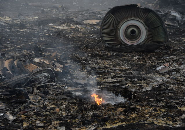 Boeing 777 crash site in Donetsk Region