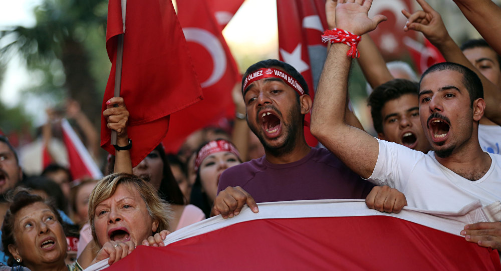 Turkish protests wave national flags