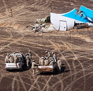 Russian Airbus A321 passenger airliner crash site in Egypt