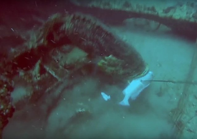Huge Fish Drags Fisherman Around After Stealing His Catch