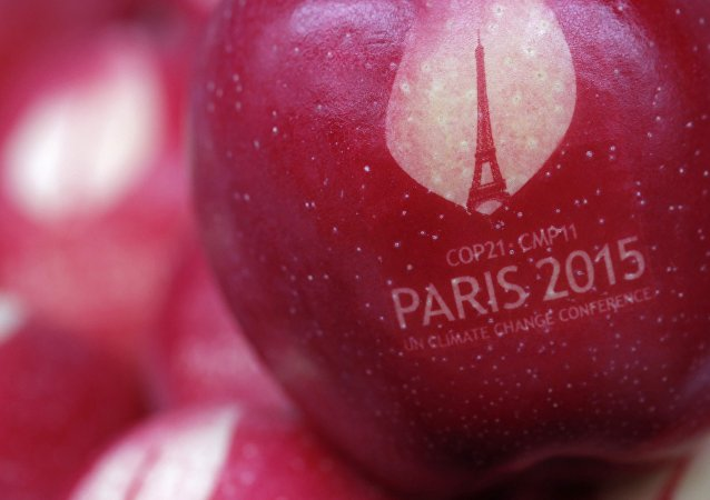 An apple marked with the logo of the World Climate Change Conference 2015 (COP21) is seen in this illustration picture at Laquenexy Fruit Gardens, near Metz, eastern France, November 3, 2015