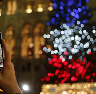 A tourist takes a picture of a Christmas tree lit in the blue, white and red colours of France's national flag in tribute to victims of last Friday's attacks in Paris, in front of the city hall in Vienna, Austria