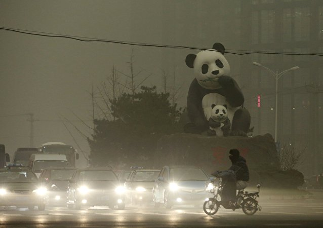 A resident rides an electric bicycleacross a street amid heavy smog as vehicles wait for a traffic light next to a statue of pandas, a landmark of the Wangjing area in Beijing, China, December 1, 2015