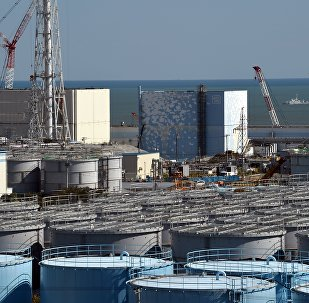 A coast guard vessel (back R) patrols the waters off the Fukushima Daiichi nuclear power plant in Okuma, Fukushima prefecture on October 9, 2015