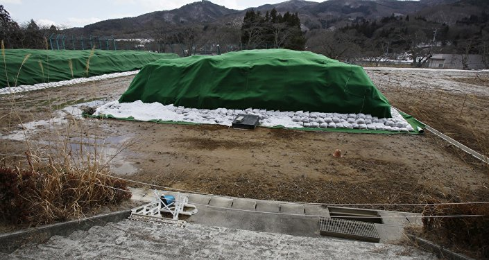 Piles of radiation-contaminated waste sit in a field in the abandoned town of Namie, outside the exclusion zone surrounding the Fukushima Dai-ichi nuclear plant in Japan (File)