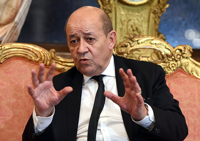 French Defence Minister Jean-Yves Le Drian