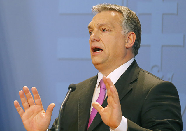 Hungarian Prime Minister Viktor Orban addresses news conferece with British Prime Minister David Cameron (not pictured) in Budapest, Hungary January 7, 2016.