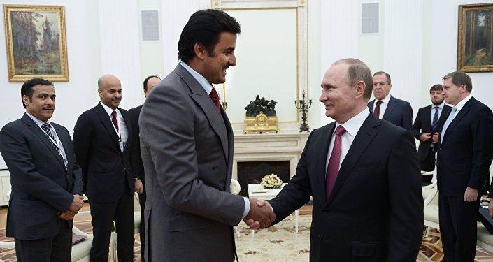 Vladimir Putin during a meeting with Qatari Emir Tamim bin Hamad al-Thani