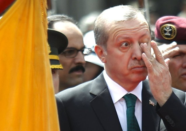 Turkish President Tayyip Erdogan rubs his eye during a diplomatic ceremony in front of Carondelet Palace in Quito, Ecuador, February 4, 2016