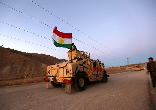 Iraqi Kurdish forces take part in an operation in northern Iraq backed by US-led strikes