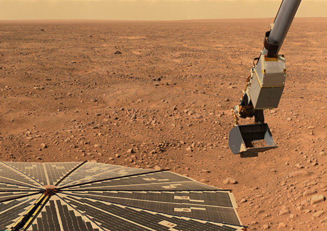 This NASA handout image, released on June 13, 2008 shows the Robotic Arm on NASA's Phoenix Mars Lander with a sample of martian soil as it prepares to move to the spacecraft's microscope station.