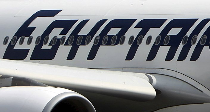 An EgyptAir plane is seen on the runway at Cairo Airport, Egypt in this September 5, 2013 file photo