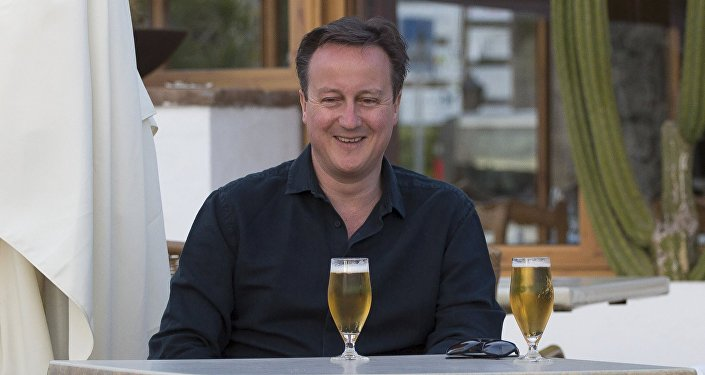Cameron revealed his financial income in the past year, including some $282,000 given as a gift by his mother, local media reported.