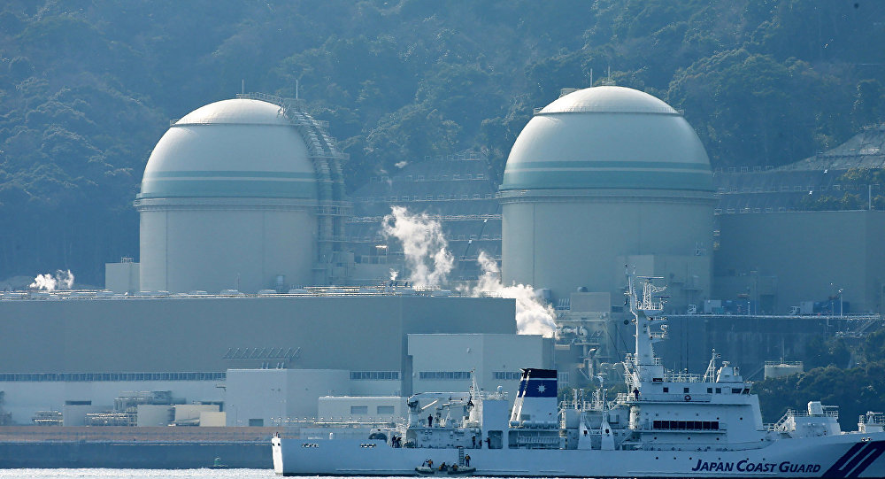 Kansai Electric Power's number 3 (L) and number 4 (R) reactors at the Takahama nuclear plant in western Japan's Fukui prefecture.