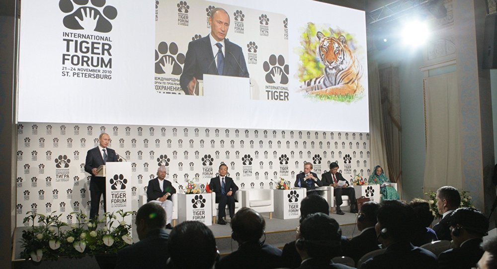 Prime Minister Vladimir Putin (left, foreground) speaking at the International Tiger Conservation Forum, November 23, 2010. (File)