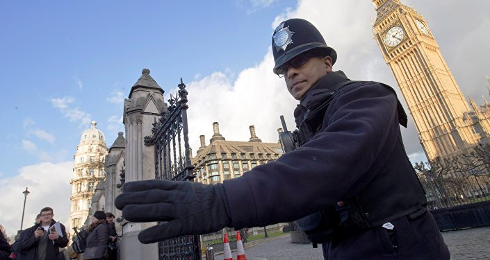 A police officer  outside the Houses of Parliament in central London on November 25, 2015.