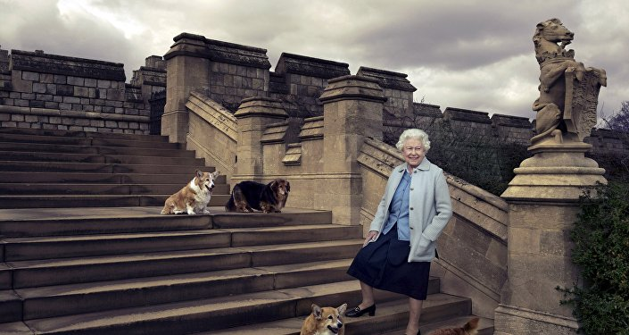 Britain's Queen Elizabeth II is seen walking in the private grounds of Windsor Castle on steps at the rear of the East Terrace and East Garden with four of her dogs.