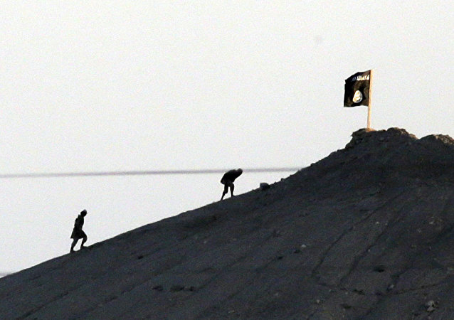 Daesh flag (File photo)