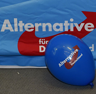 A balloon of the right-wing populist party Alternative for Germany (AfD) party can be seen during an election party in Berlin on March 13, 2016.