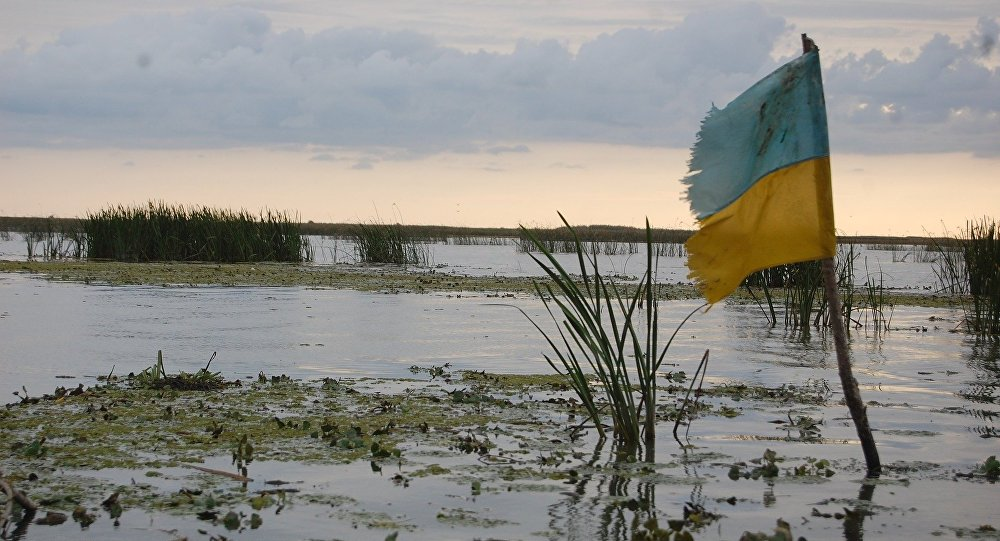 Swamp in Ukraine