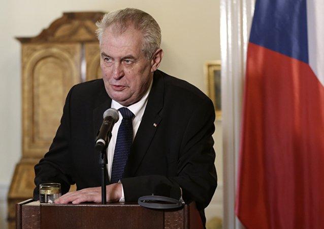 Czech Republic's President Milos Zeman (File)