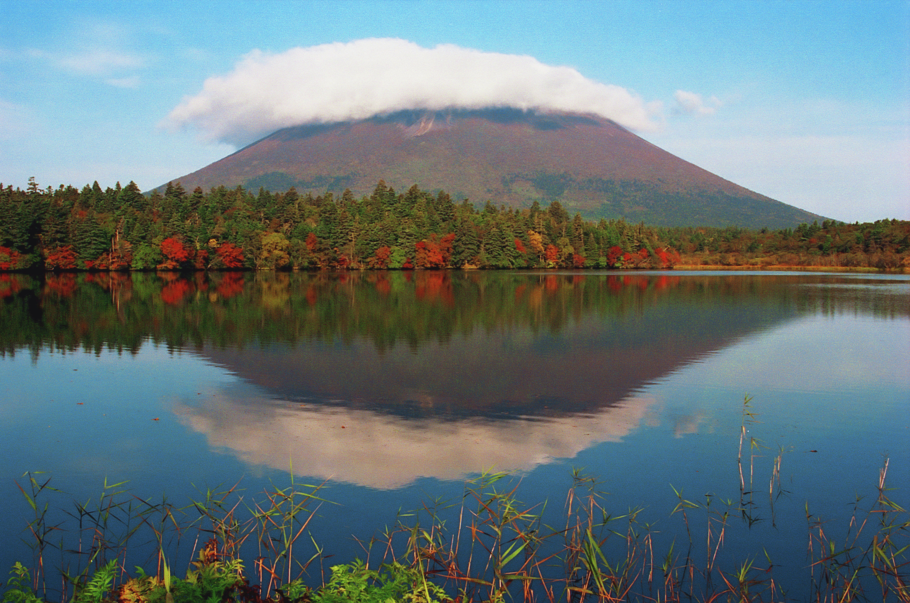 The nature of the Kuril islands