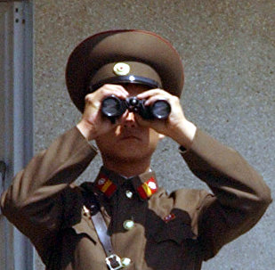 A North Korean military soldier uses a pair of binoculars