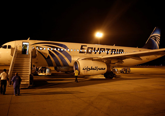 Airport security check an EgyptAir plane after it arrived from Cairo to Luxor International Airport, Egypt