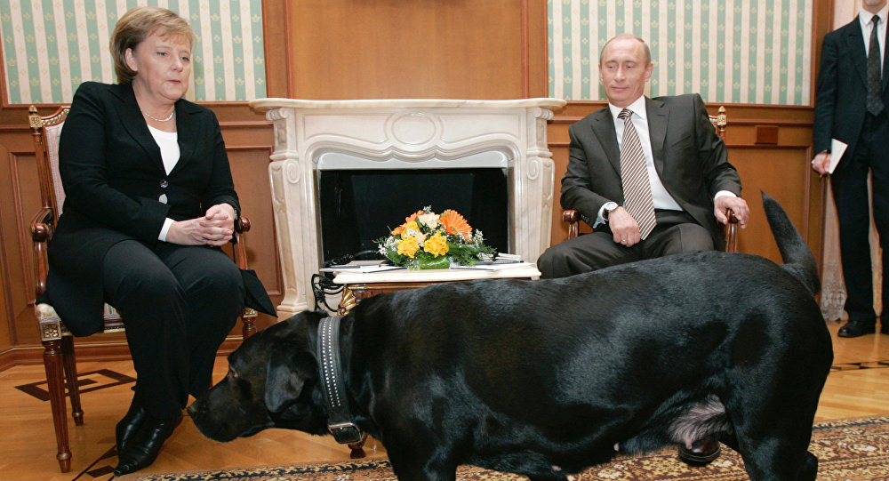 The German chancellor and the Russian president meeting in Sochi