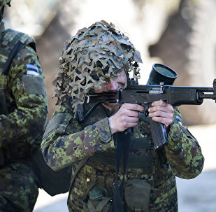 Estonian army exercises. (File)