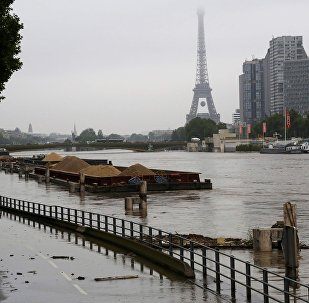 Barges are moored together near the Eiffel Tower as high waters cover the banks of the Seine River in Paris, France, after days of almost non-stop rain caused flooding in the country, June 2, 2016