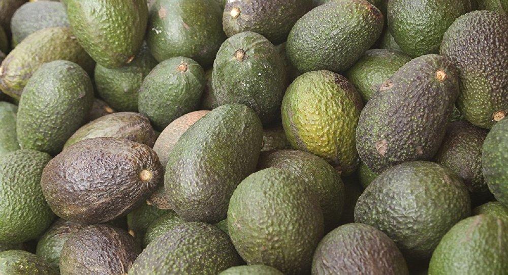 Avocado Shortage Fuels Crime Wave in New Zealand