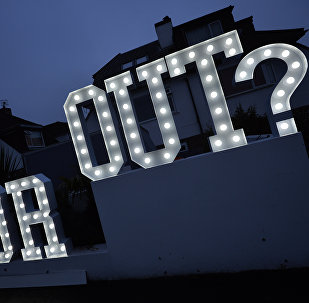 An illuminated In or Out sign is pictured outside a house in Hangleton near Brighton in southern England.