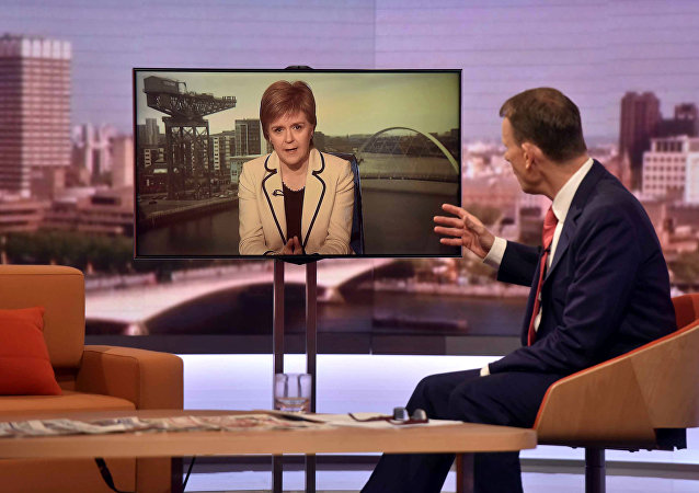 Scotland's First Minister Nicola Sturgeon is seen speaking via videolink on the BBC's Andrew Marr Show in this photograph received via the BBC in London, Britain July 17, 2016.