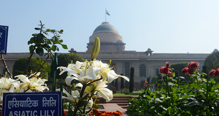 Asiatic Lily's bloom in the Mughal Gardens at Rashtrapati Bhawan, the Presidential Palace, in New Delhi