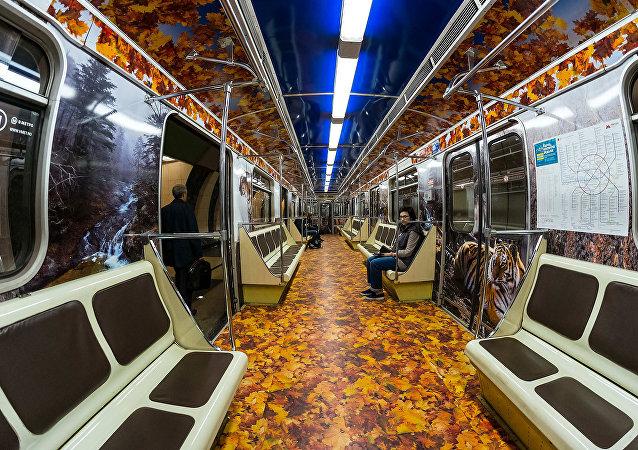 Striped Express Moscow Metro Train